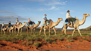 explore-cities-alice-springs-alice-springs