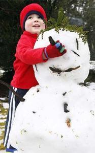 snow1a