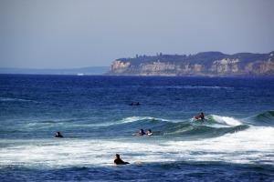 surferanddolphins