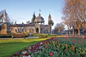 bendigo-tulips-and-war-memorial