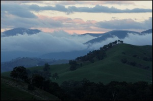 Late fog in the hills, Australia