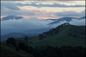 Late fog in the hills, Australia