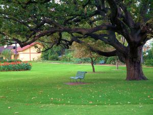 Queens Gardens, Perth, WA - 3